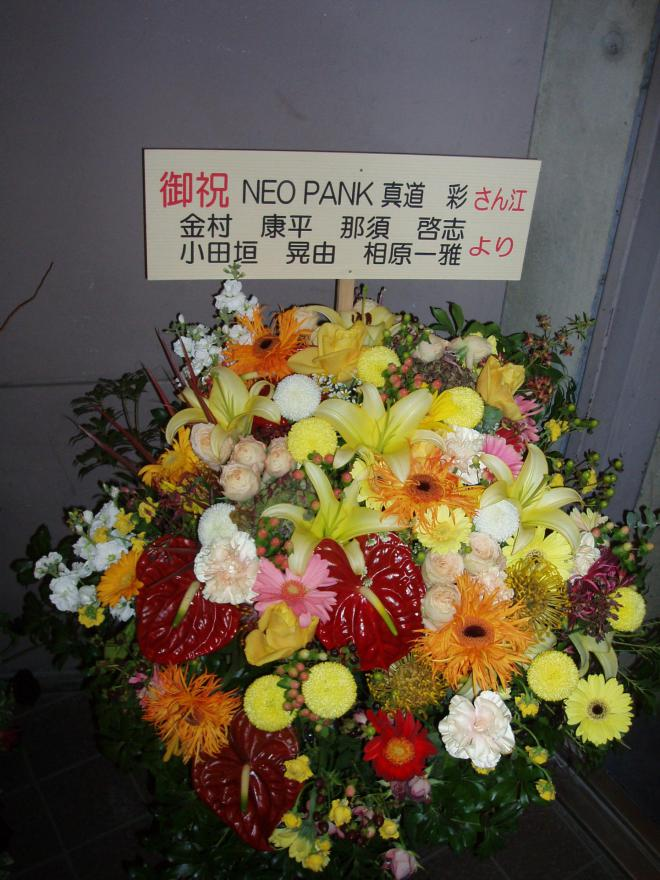 neo pank